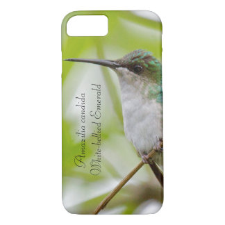 White-bellied Emerald iPhone 8/7 Case