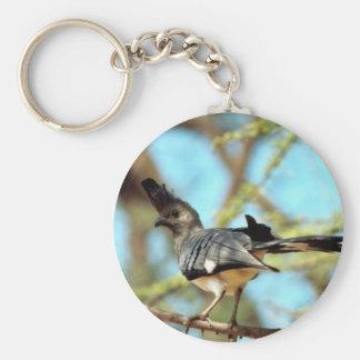 White-bellied Go Away Bird Key Chains