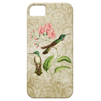 White Bellied Mountain Gem Hummingbird iPhone 5 Case
