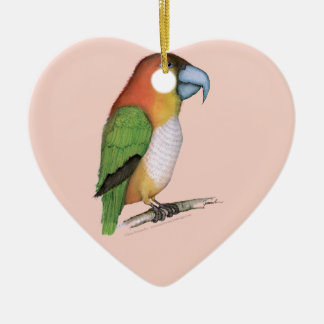 white bellied parrot, tony fernandes.tif ceramic heart decoration