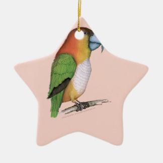 white bellied parrot, tony fernandes.tif ceramic star decoration