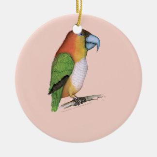 white bellied parrot, tony fernandes.tif round ceramic decoration