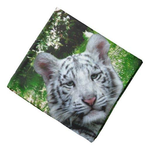 White Bengal Tiger Bandana