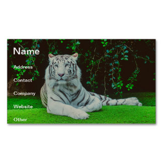 White bengal tiger magnetic business cards