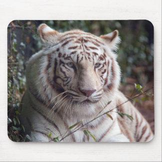 White Bengal Tiger Mouse Mat