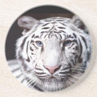 White Bengal Tiger Photography Coaster