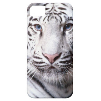 White Bengal Tiger Photography iPhone 5 Case