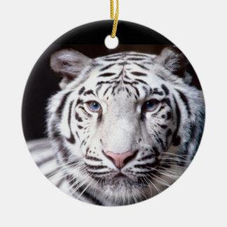 White Bengal Tiger Photography Round Ceramic Decoration