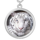 White Bengal Tiger Photography Round Pendant Necklace