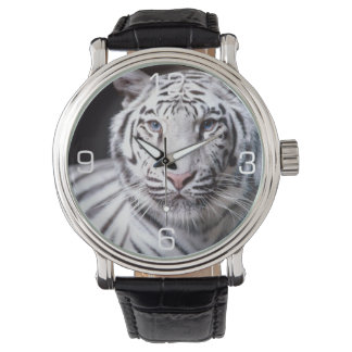 White Bengal Tiger Photography Watch