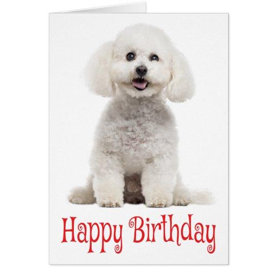 White Bichon Frise Puppy Dog Red Happy Birthday