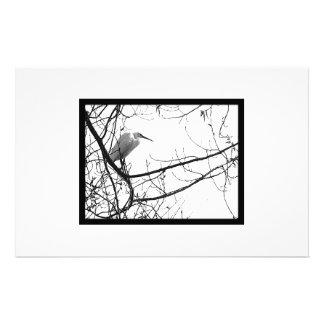 White bird bloc note motifs pour papier à lettre