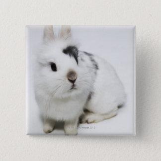 White, black and brown rabbit 15 cm square badge