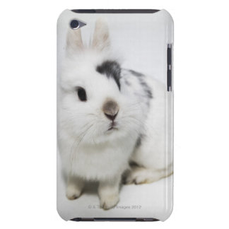 White, black and brown rabbit barely there iPod cover