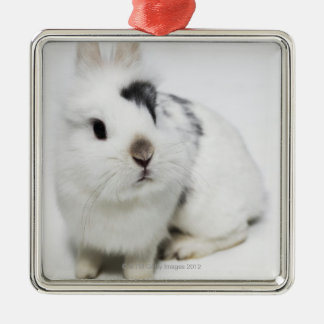 White, black and brown rabbit christmas ornament