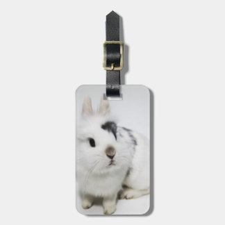 White, black and brown rabbit luggage tag