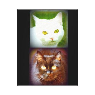 white/black kittycats canvas print