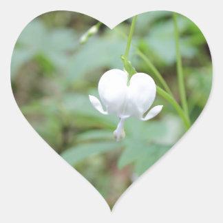 White Bleeding Heart Heart Sticker