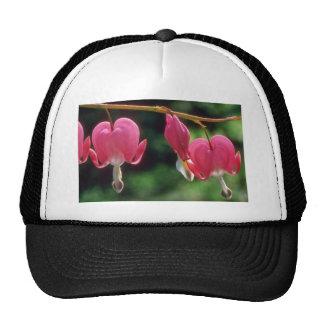 White Bleeding hearts flowers Hats