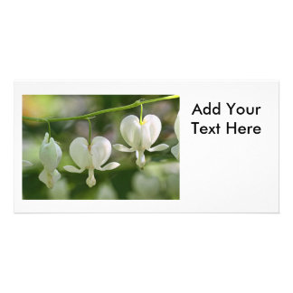 White Bleeding Hearts Flowers Personalized Photo Card