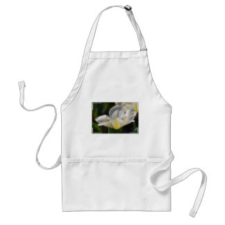 White Blooming Tulip Aprons