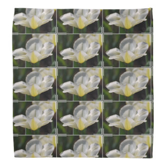 White Blooming Tulip Bandanna