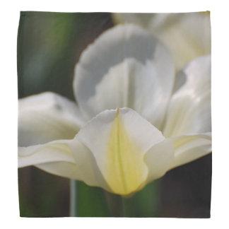 White Blooming Tulip Head Kerchiefs