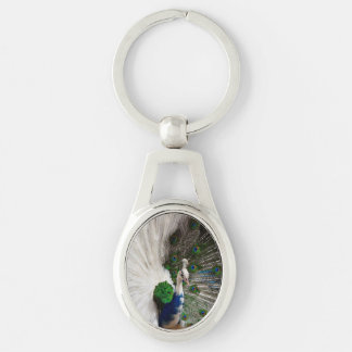 White Blue Peacock Silver-Colored Oval Key Ring