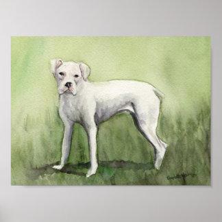 """""""White Boxer"""" Dog Art Print"""