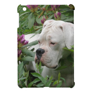 White Boxer in Pink Rhodies iPad Mini Cover
