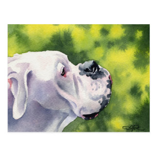 White Boxer Postcard