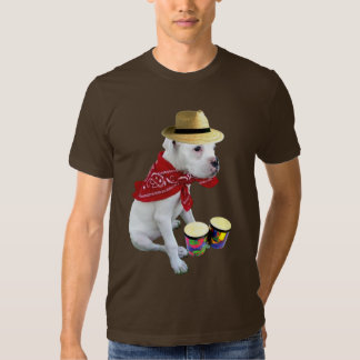 White boxer pup with Bongos t-shirt