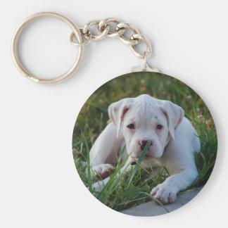 White Boxer Puppy Key Ring