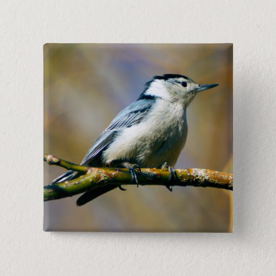 White Breasted Nuthatch Button