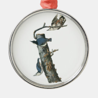 White-breasted Nuthatch by Audubon Christmas Ornament