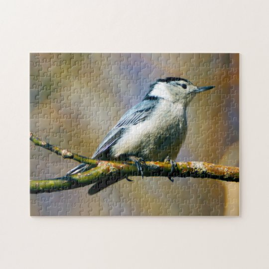 White Breasted Nuthatch Puzzle