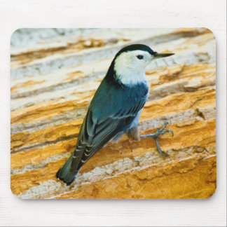 White-Breasted Nuthatch (Sitta Carolinensis) Mouse Mat