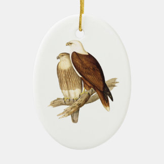 White Breasted Sea Eagle. Large Bird of Prey. Christmas Tree Ornament
