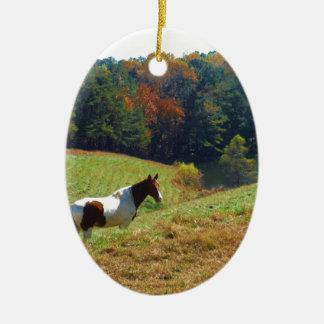 White & Brown horse, Autumn pond Ceramic Oval Decoration