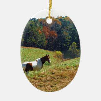 White & Brown horse, Autumn pond Christmas Ornament