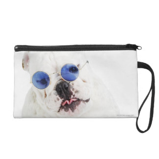 White bulldog with blue tinted shades wristlet purses