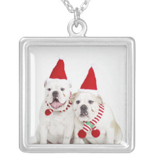 White bulldogs silver plated necklace