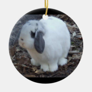 White Bunny Rabbit Happy Easter Christmas Ornament