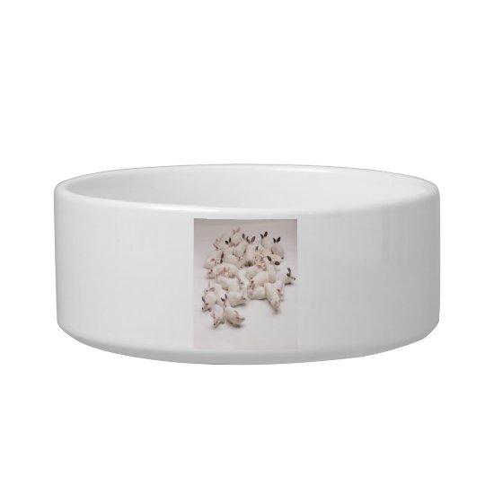 White Bunny Rabbit Pet Bowl