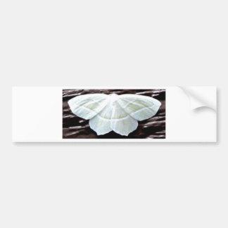 WHITE BUTTERFLY BUMPER STICKER