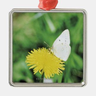 White butterfly feeding on a dandelion christmas ornament
