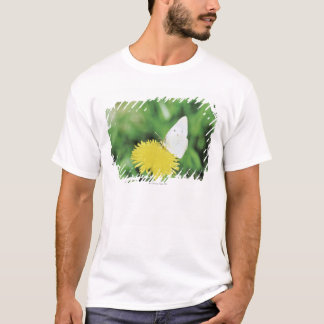 White butterfly feeding on a dandelion T-Shirt