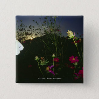 White Butterfly in flight at sunset 15 Cm Square Badge