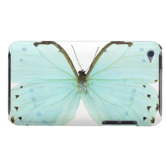 White butterfly iPod touch covers