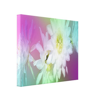 White Cacti Flowers On Pastel Background, Canvas Print